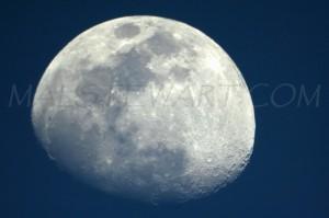 Moon  011. WEB