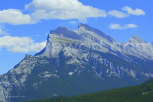 022___Canada,_Razorback......._(Medium)_c.jpg