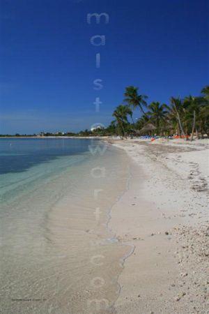 Beach__..._(Medium).jpg
